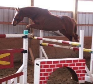 Viking free jumping at Royale #3
