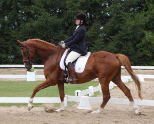 Centaur dressage #6 Aug 7